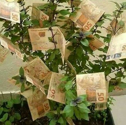 Se ganha um bom ordenado, trabalha poucas horas, consegue pagar as suas contas, faz uma poupança mensal e ainda lhe sobra bastante para apro...