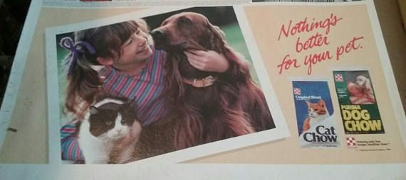 Vintage Purina Dog Chow Advertisement
