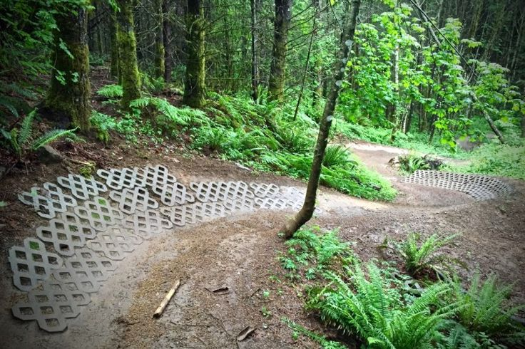 12 of the Best Flow Trails in the USA | Singletracks Mountain Bike News
