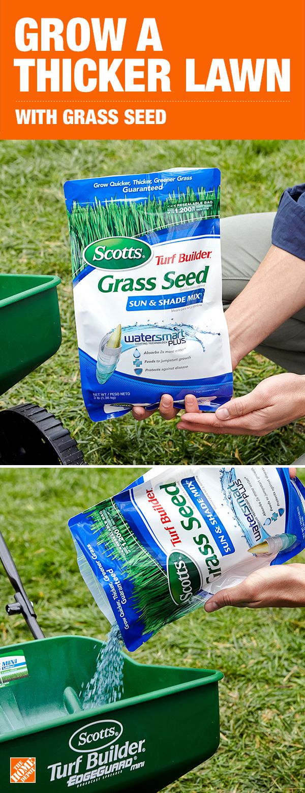 Grass Seed Plays An Important Role In Growing Thicker Greener Grass When Choosing Seed For Your Lawn Make Sure You Consider The Ty Lawn Care Grass Seed Lawn