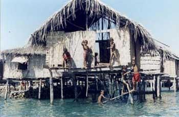 """The language of the Sea has a resemblance to Malay and Malay is classified as Local. Currently, they generally work as fishermen. As The Sea Bajau tribe is sometimes dubbed as a """"wanderer of the sea"""", because they moved to live on a boat."""