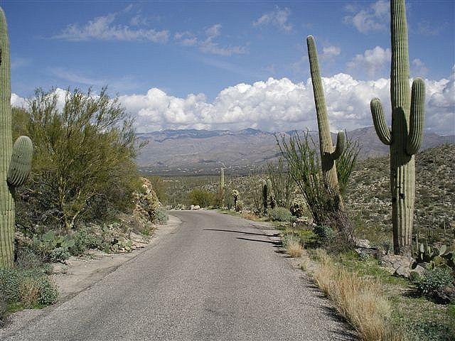 Arizona road (pinned by haw-creek.com)