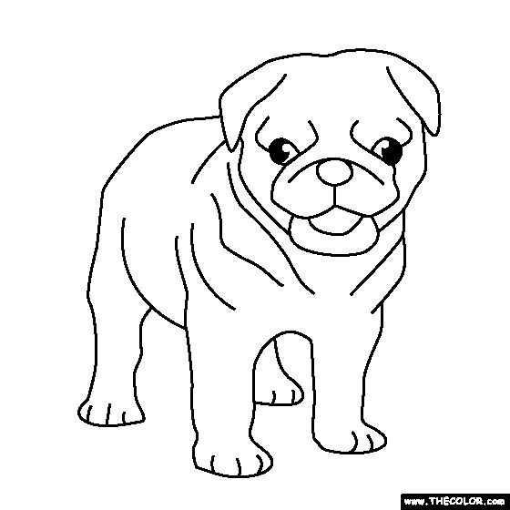 Pug Puppy Coloring Page Craft