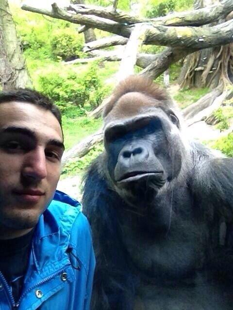 Original poster: I took a selfie with my main dude #funny #selfie #main #dude #humor #comedy #lol