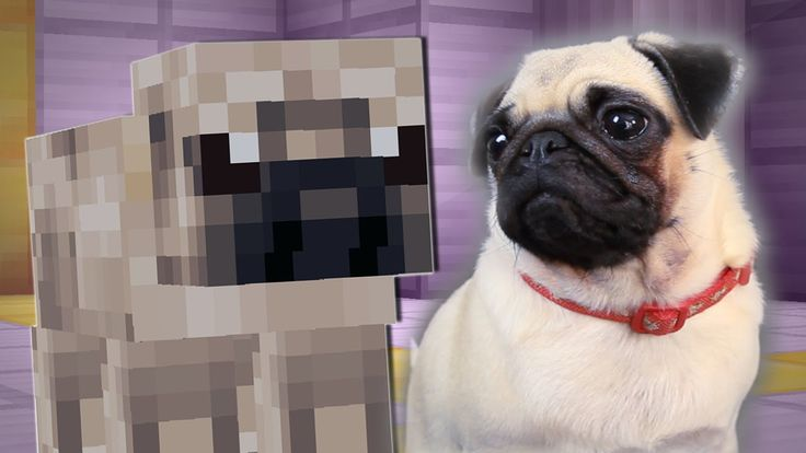 Another take on pugs, IN MINECRAFT