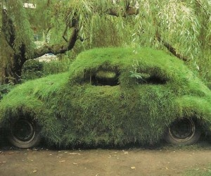 30 best gardens images on Pinterest | Bmx bikes, Track and Backyard ideas