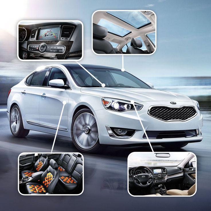 A premium vehicle requires premium features.  This is the Kia Cadenza. http://www.kia.com/us/en/vehicle/cadenza/2015/experience?story=hello&cid=socog