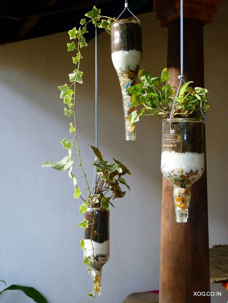 Hanging inverted bottle planters with layered pebbles, sand and soil. A great way to house your favourite drooping plants.     Contact us on +91 88845 55869 or xanaduorganicgardens@gmail.com.  www.xog.co.in