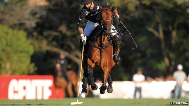 Facundo Pieres one of the top polo players in the world, 10 goals in Argentina, USA, UK, France and Spain, a genious playing polo. We have 3500 polo players registeres with the Argentine Polo Association and some 5000 more, which are not registered.