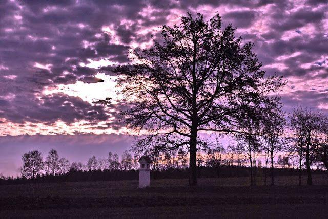 NINIVEMAIL: Příroda usíná spánkem podzimu a brzo se šeří