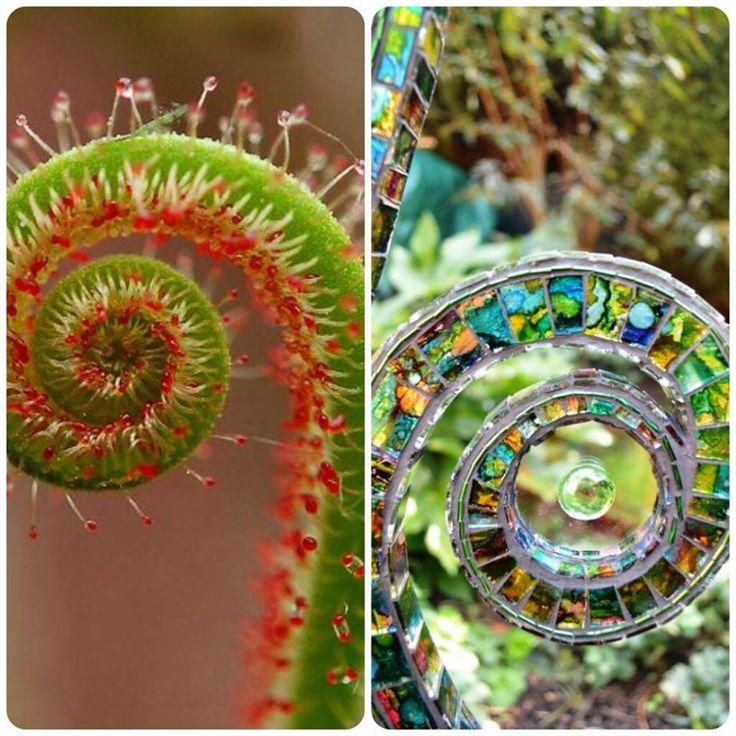 Natura inspira arta :) #nature inspires #art  #moodboard #inspiration #spiral