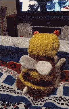 20160103234054_JZyFKjUM_Cat-bee-costume-watching-TV.gif