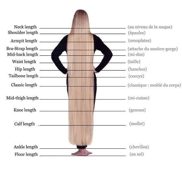 long hair chart. 'Classic length' is past bottom of hip.