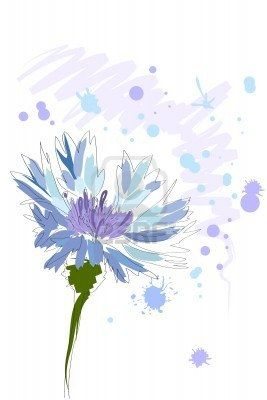 beautiful blue watercolor cornflower with splash on white background Stock Photo - 8302221