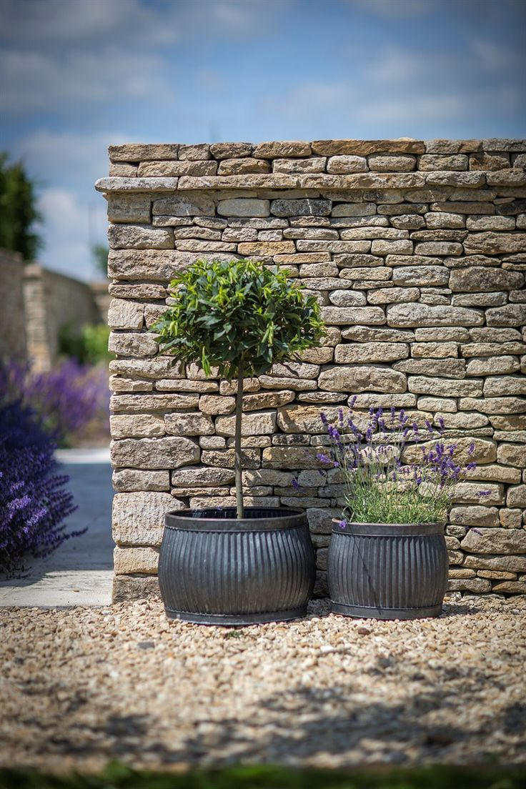 This set of 2 Shallow Round Vence Planters are a timeless classic, reminiscent of Victorian wash dolly tubs