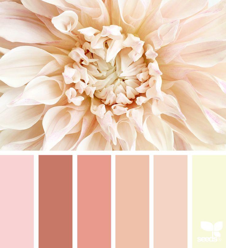 The 25 Best Kitchen Color Palettes Ideas On Pinterest: 25+ Best Ideas About Color Schemes On Pinterest