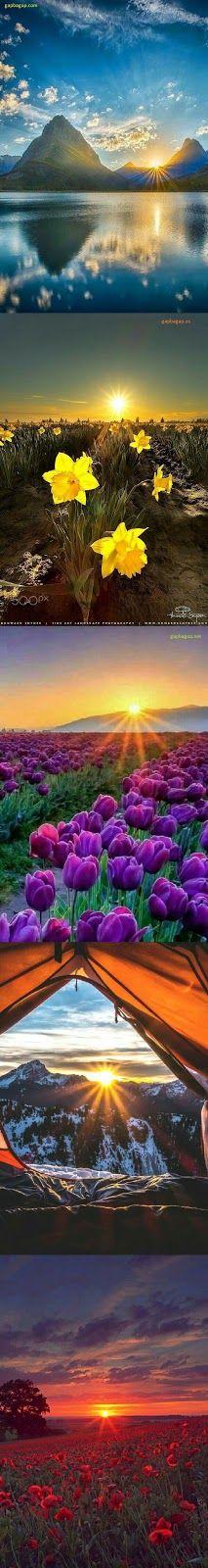 Top 5 Amazing Photography Of Sunrise and Sunset