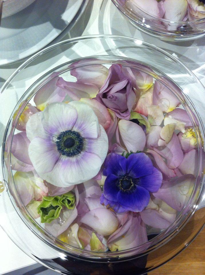 Jeg lagde et flytebad av roser og anemoner. #love