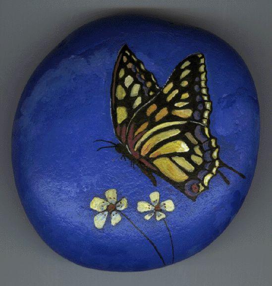 swallowtail butterfly rock julia 39 s painted pets
