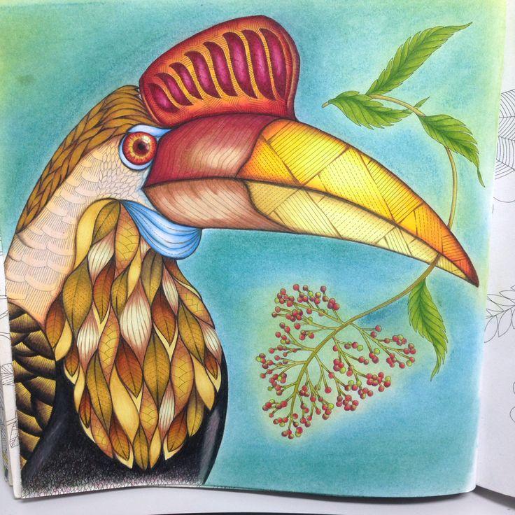 From Tropical Wonderland By Millie Marotta Prismacolor Premiere Pencils Coloring BooksAdult ColoringColouringPencilBirdJohanna BasfordPrismacolorAnimal