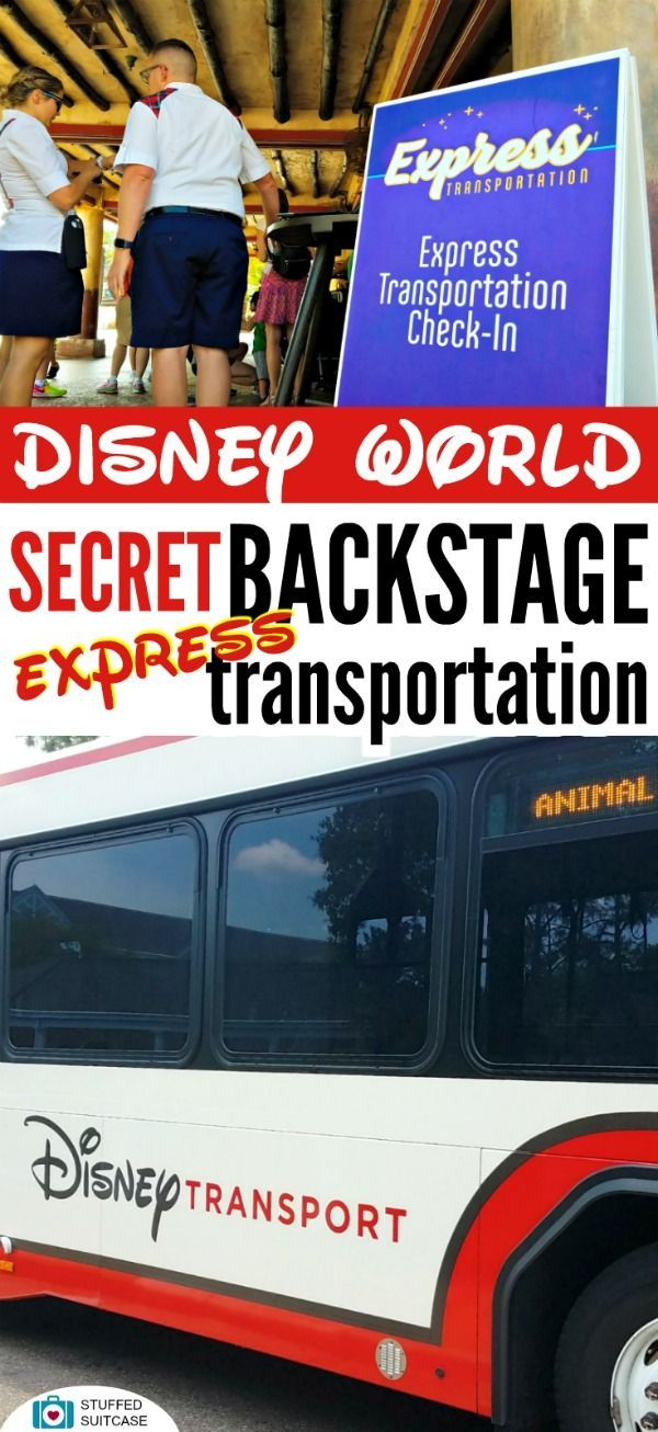 Looking for Disney secrets? How about skipping the lines to enter when park hopping and going backstage to transfer between parks? Use the brand new Express Transportation service at WDW!