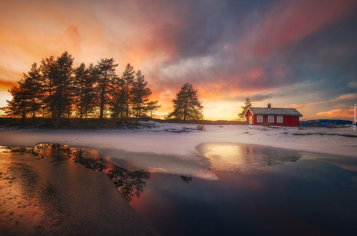 Ringerike, Norwegia, Zima, Jezioro, Domek, Zachód Słońca, Drzewa