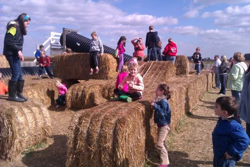 Family Farm Activities in Northeast Ohio | Columbus, OH Mystery Corn Maze | Cleveland Pumpkin Patch