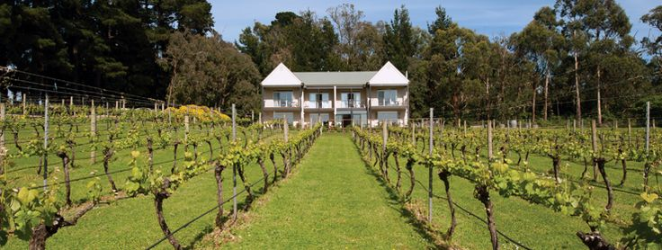 Mantons Creek Estate   Mornington Peninsula - News
