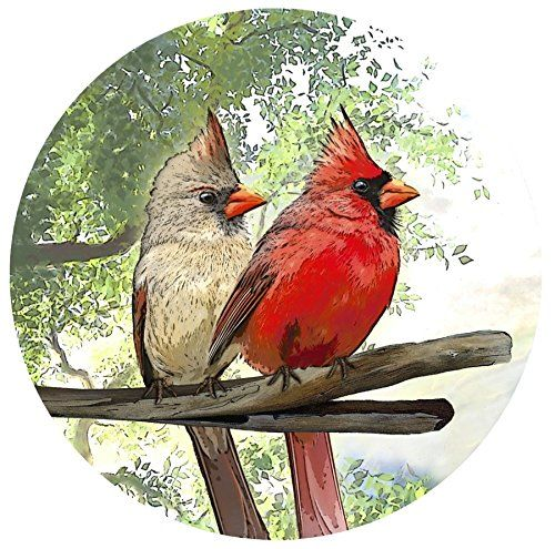 Best SeeThrough Window Decals Look Like Stained Glass Images - Window decals for bird safety