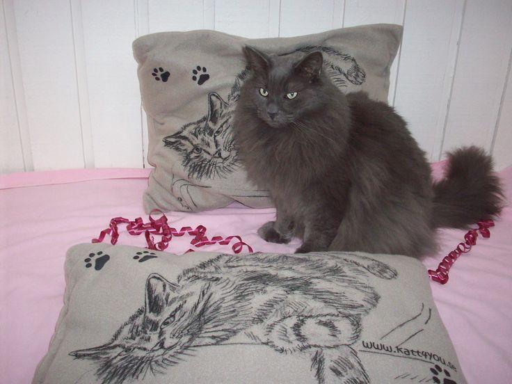Bamse sitter stolt vid de revolutionerande saccosäckarna som är goa bäddar för katter. Finns bara hos www.katt4you.se