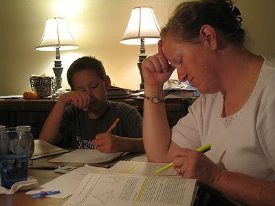 WISE KIDS: Homework Help