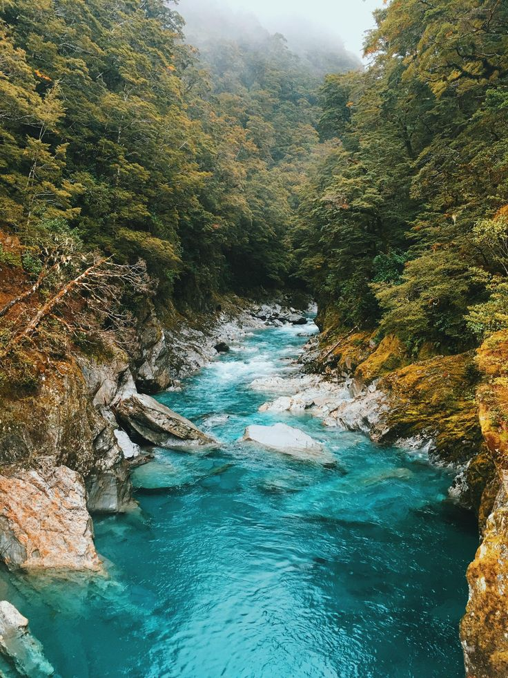 Blue Pools Mt Aspiring National Park New Zealand [OC][30244032] #reddit