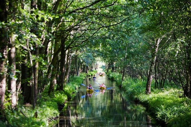 Spreewald, mit dem Kanu unterwegs