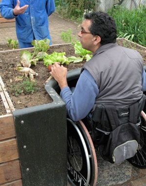 "Terraform, a raised garden plot for wheelchair users. The approach allows wheelchair users easy access. An ingenious ""arched pod"" offers a greater degree of comfort, enabling wheelchair-bound gardeners to seed and bed at table level."