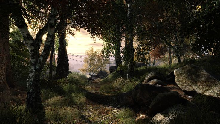 Bilderesultat for Vanishing of ethan Carter screenshots