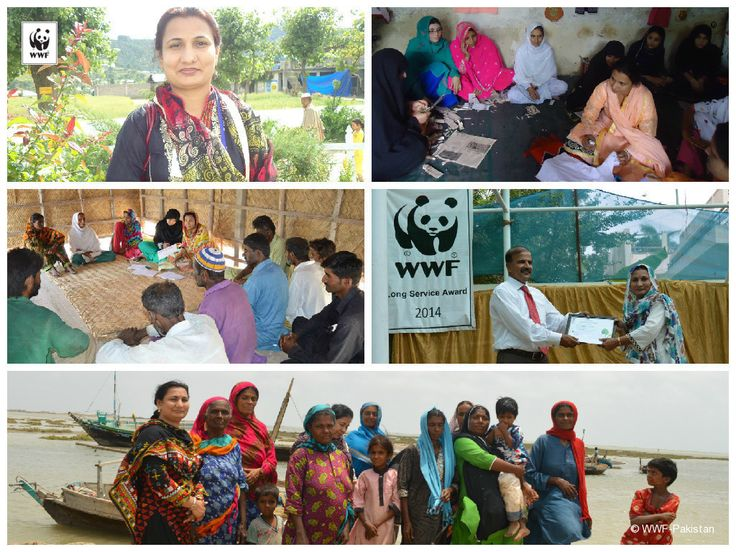 Meet Rukhsana Razaque who joined WWF-Pakistan in March 2007. She holds two Masters Degrees from the University of Sindh; an M.A in Commerce and an M.Sc in Rural Development. She is currently working as Community Development Officer. Read her full story at http://on.fb.me/1BG5w0N