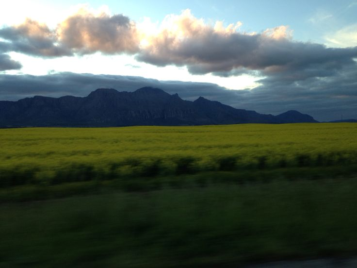 Driving on the N7 highway in Western Cape... This is taken just after the town Piketberg