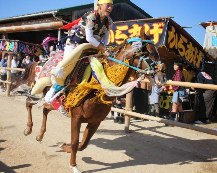 Otomouma #Horse Running at Kamo #Shrine!  Kikuma is a small #town between Matsuyama and Imabari in Ehime Prefecture. Kamo Shrine in Kikuma stands against a hillside near a little river that runs down to the Seto Inland Sea.  Once a year in the autumn festival, the horses are run up the slope to Kamo Shrine. Today just 18 horses are kept by local farmers for the purpose of running in the festival, which is an Intangible Cultural Property.