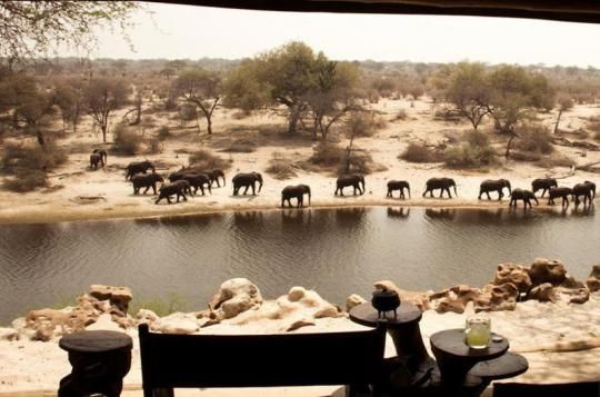 Watching elephants from Meno a Kwena Camp (Makgadikgadi Pans, Botswana). Looks like a place you wanna go? Just let us know: info@gondwanatoursandsafaris.com