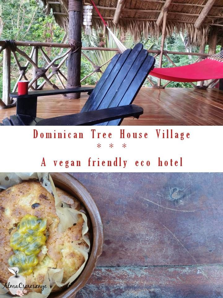 Dominican Tree House Village. Samana. Vegan friendly. Jungle. #dominicanrepublic #vegan #travel #samana #treehousevillage #dominicantreehousevillage