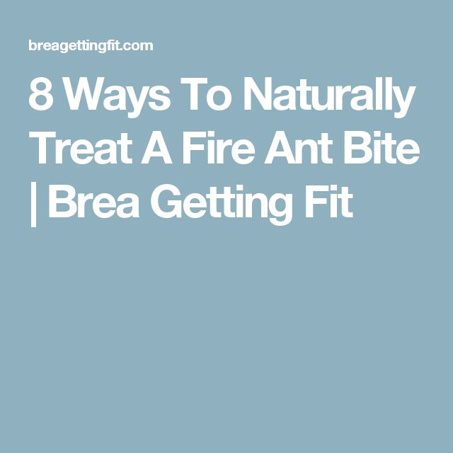 8 Ways To Naturally Treat A Fire Ant Bite | Brea Getting Fit