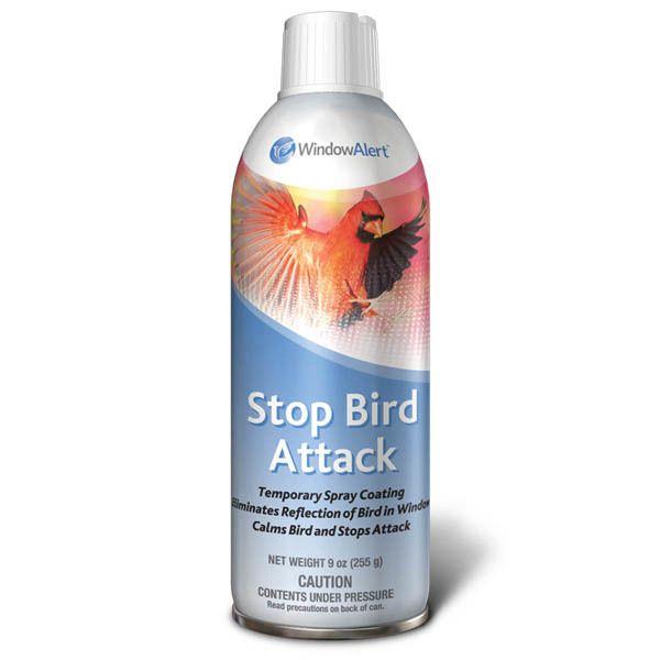 Stop Bird Attack - WindowAlert