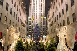 NY See the BEST » New York City Tours - OnBoard New York toursNew York City Tours - OnBoard New York tours