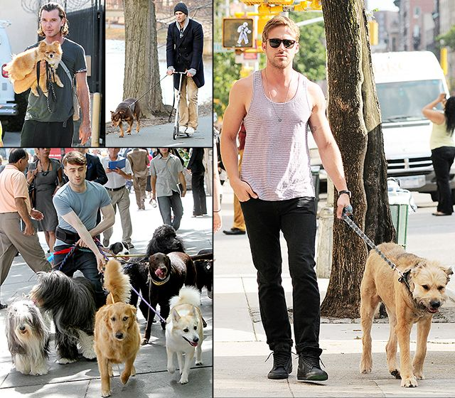 Hot Hunks Walking Dogs