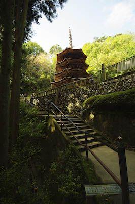 af_blog: 安楽寺「八角三重塔」