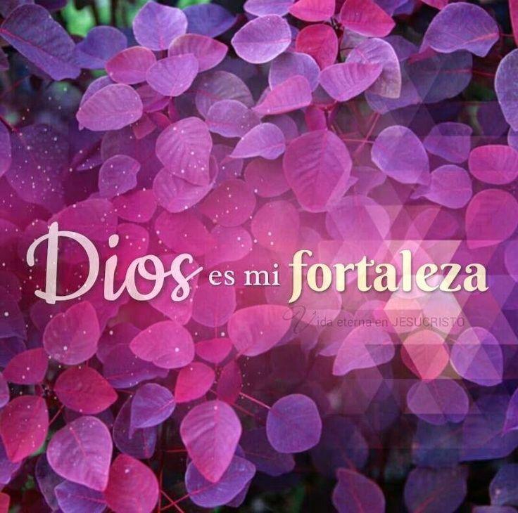 Mi confianza esta en ti Dios