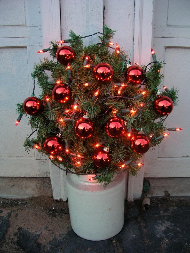 Little potted tree