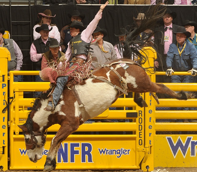 1000 Images About Saddle Bronc On Pinterest Montana