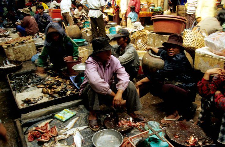 Angkor, il mercato del pesce