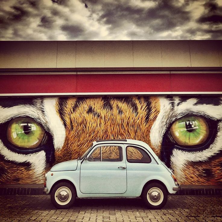 """""""Lea Perelsztein (@lealovescars) inherited a love for cars from her dad, but it was a tiny blue 1971 Fiat 500 that got Lea's Instagram account rolling.…"""""""